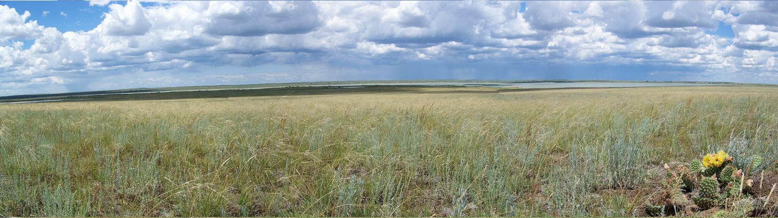 slider-bowdin-prairie