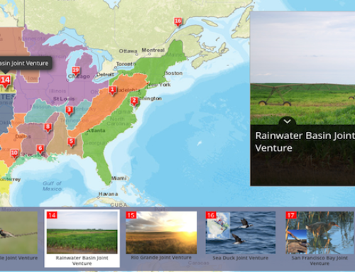 Story Map Illustrates Accomplishments of Migratory Bird JVs